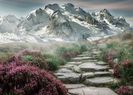 Hintergrundbild - Berge mit Weg